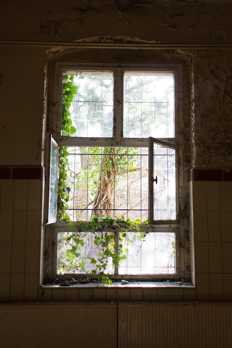 Abandoned Adventures - Beelitz Heilstatten 03