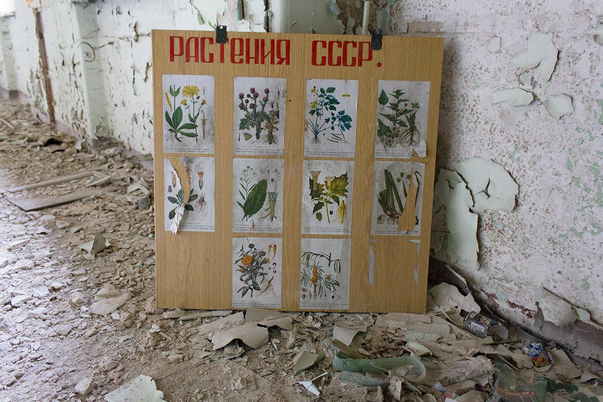 Abandoned Adventures - Beelitz Heilstatten_9233