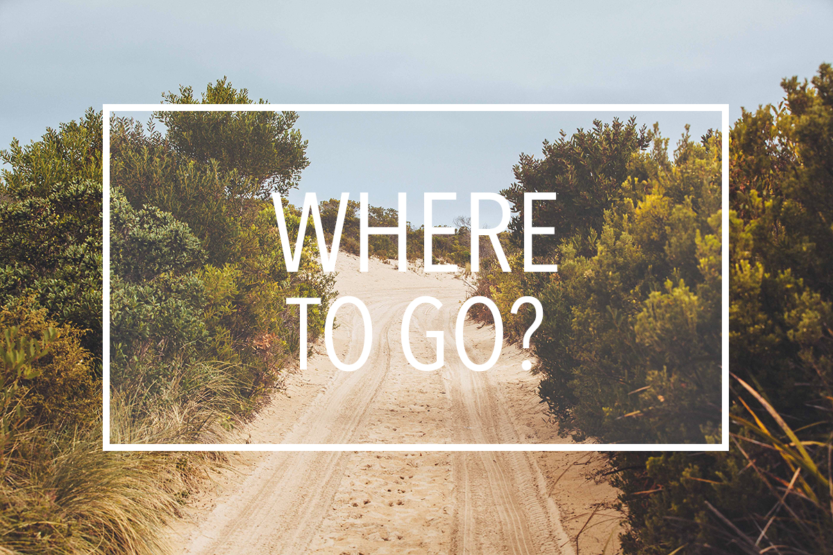 Where to go?