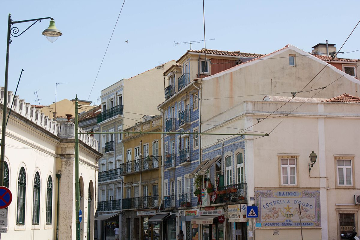lisbon-tips-blackbirdsblossom-04