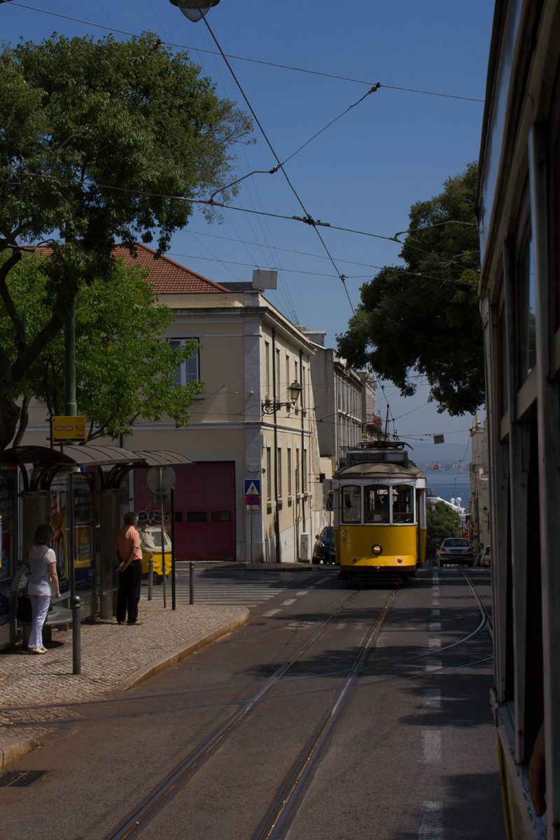 lisbon-tips-blackbirdsblossom-05