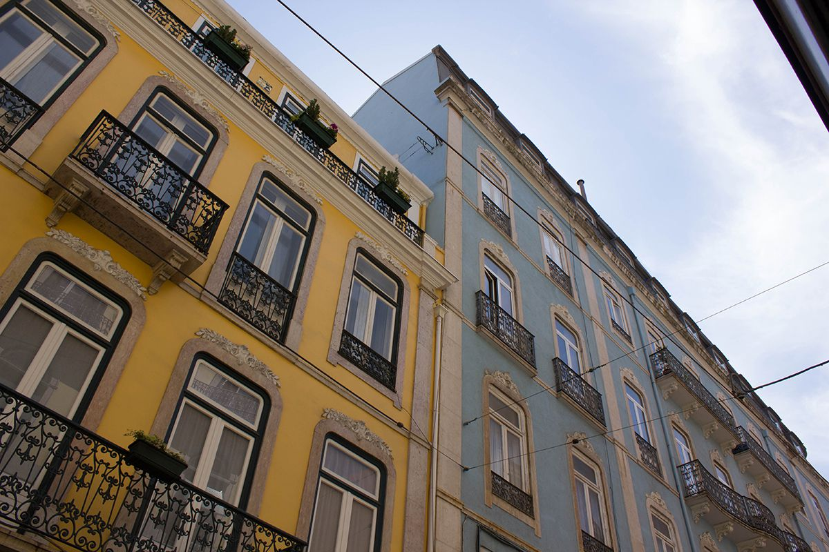 lisbon-tips-blackbirdsblossom-06