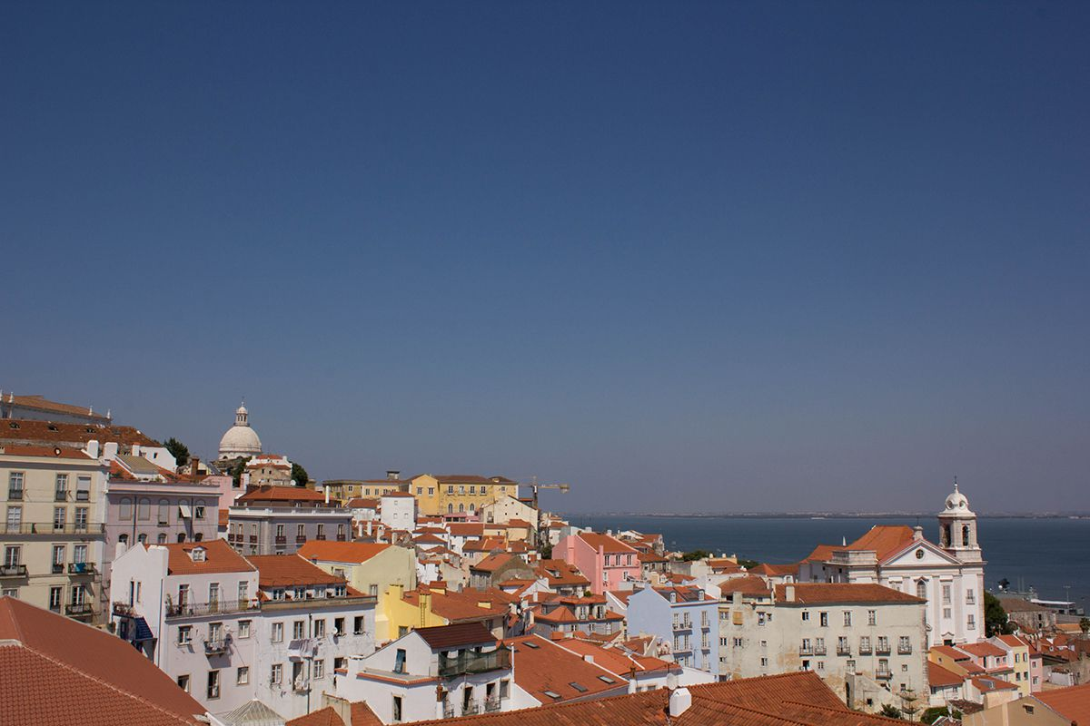 lisbon-tips-blackbirdsblossom-08