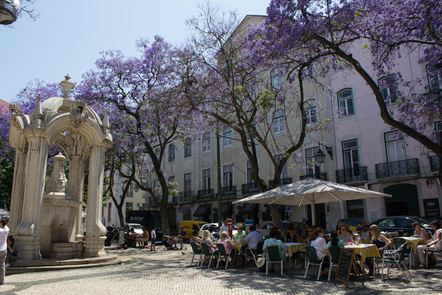 lisbon-streets-travel-tips-blackbirdsblossom-19