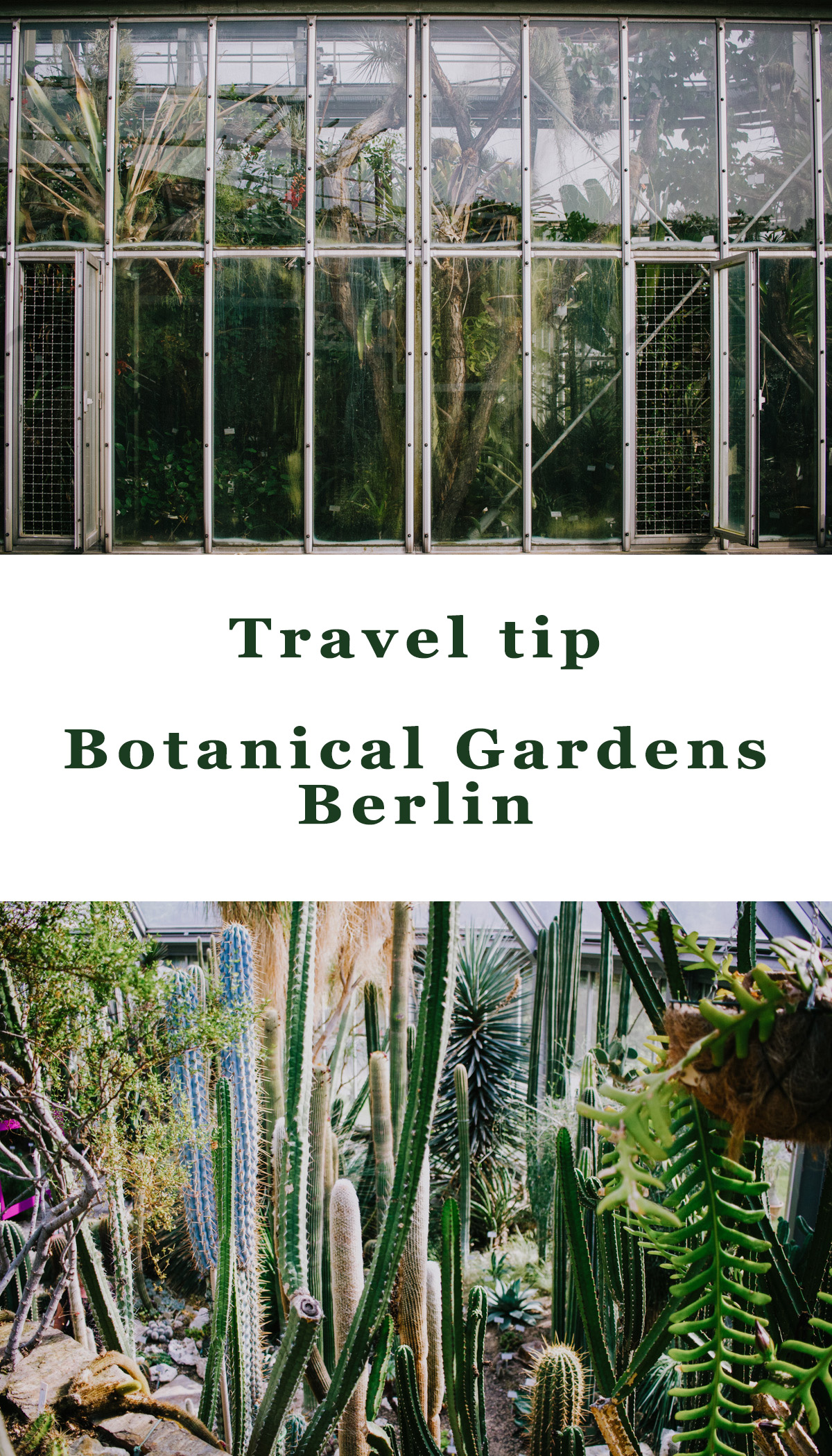 Berlin Travel Tips - Botanische tuin